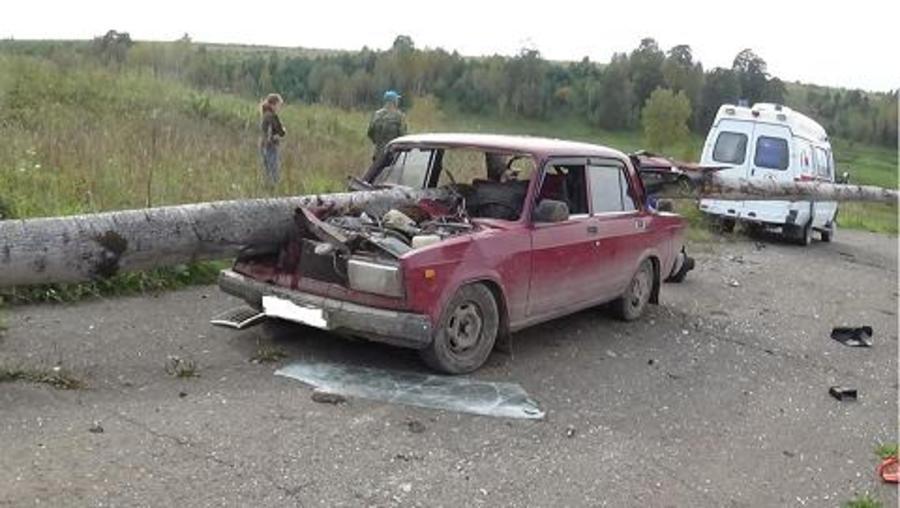 В Октябрьском районе автомобиль проткнуло насквозь стволом дерева - фото 5