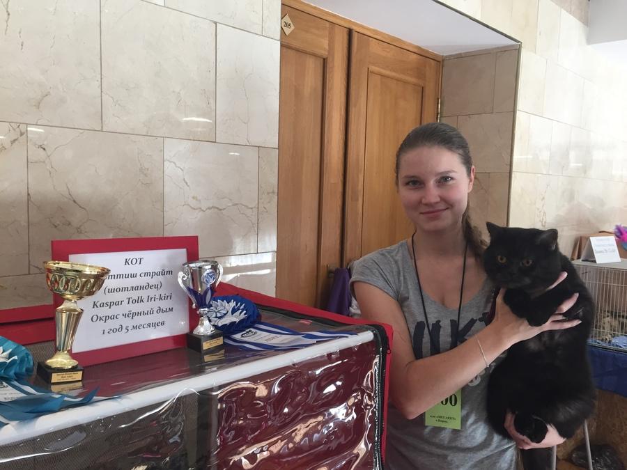 В Перми лучшей кошкой стала Люси