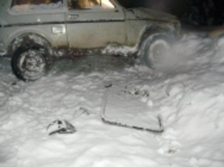 В Чердынском районе перевернулась Нива, погиб пассажир - фото 1