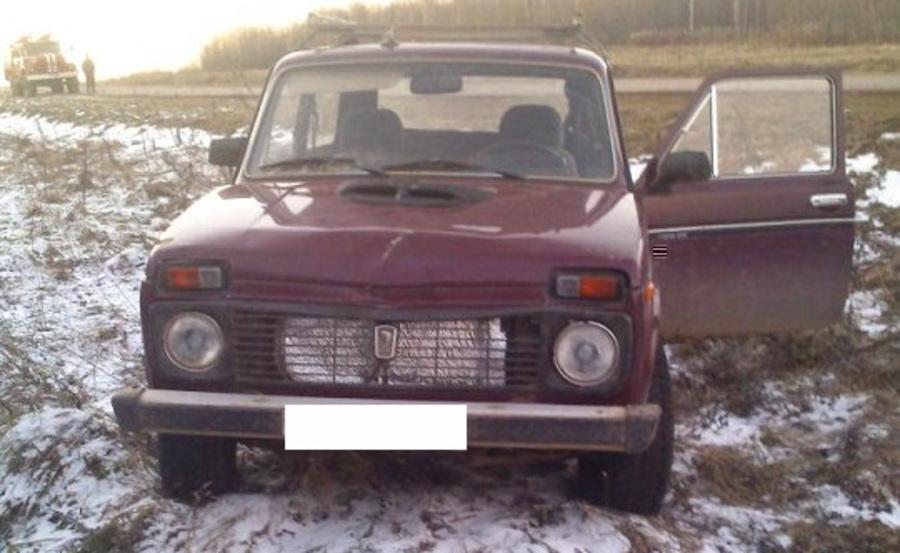 В Пермском крае женщина-водитель сбила женщину-пешехода - фото 1