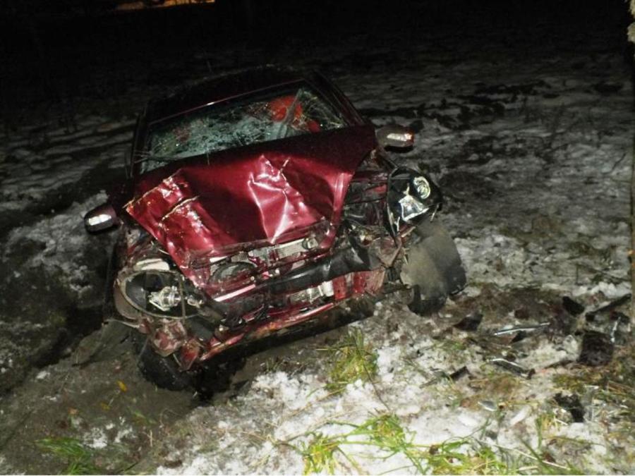 В Соликамске Лифан врезался в дерево, двое раненых - фото 1
