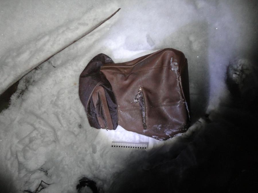 В Александровске полицейские раскрыли грабеж