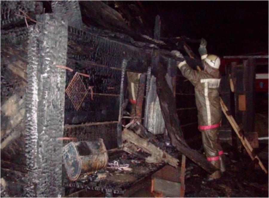 В Перми в горящем доме погибли бабушка и ее семимесячный внук
