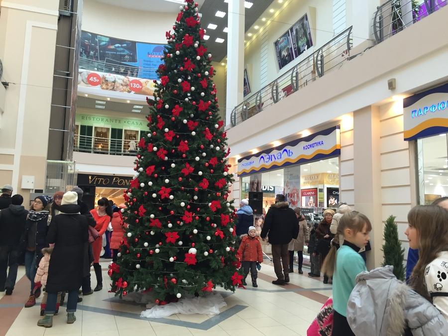 В Пермском торговом центре «Столица» дети встретили Новый год