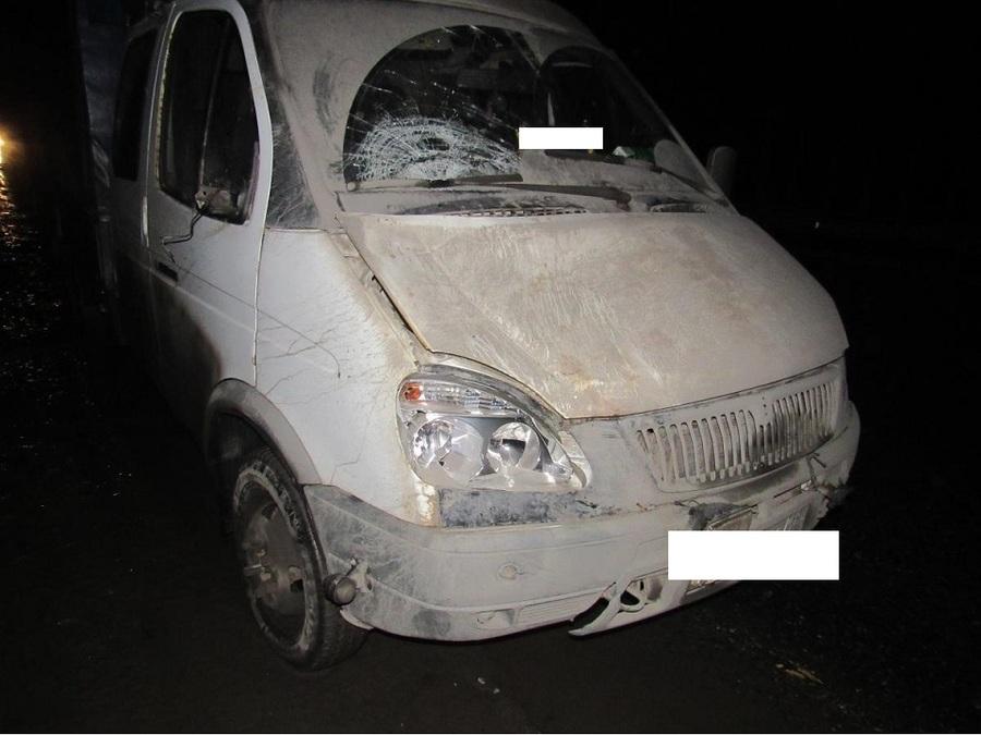 В Пермском крае Газель сбила двоих пешеходов - фото 1