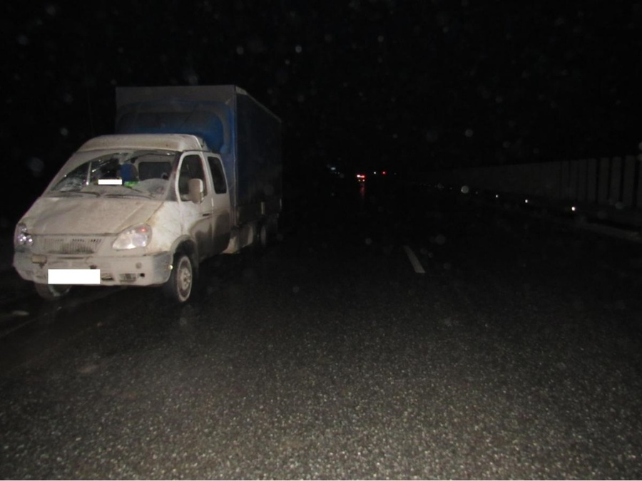 В Пермском крае Газель сбила двоих пешеходов - фото 2