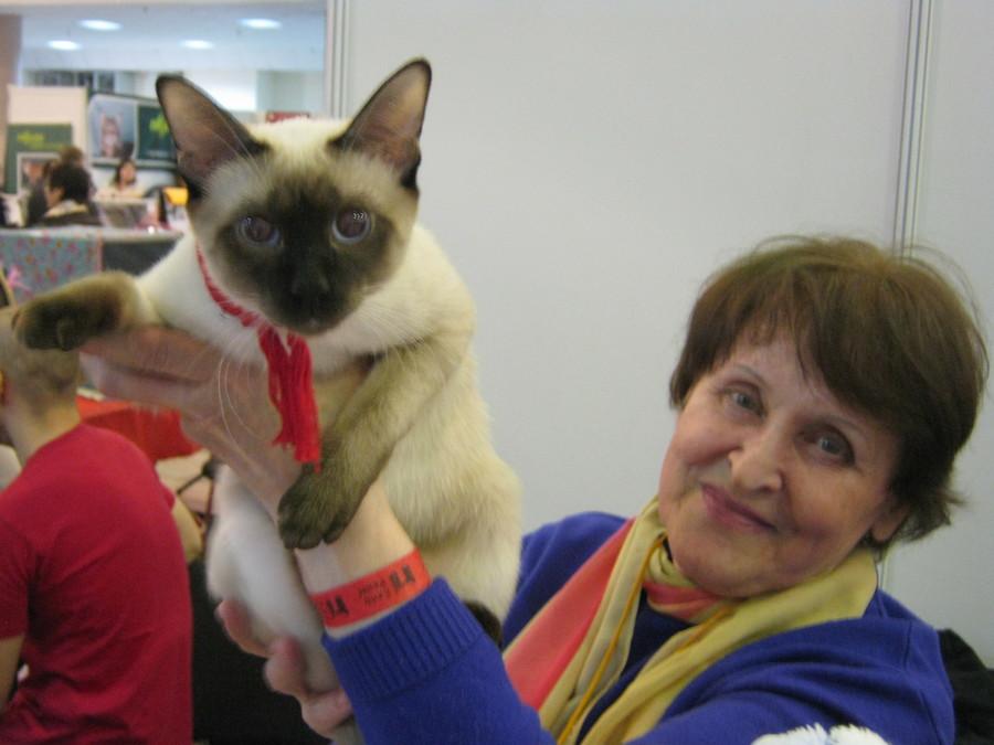 В Перми открылась выставка кошек