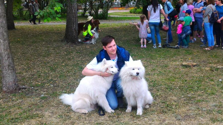 В Перми появились собаки-обнимаки