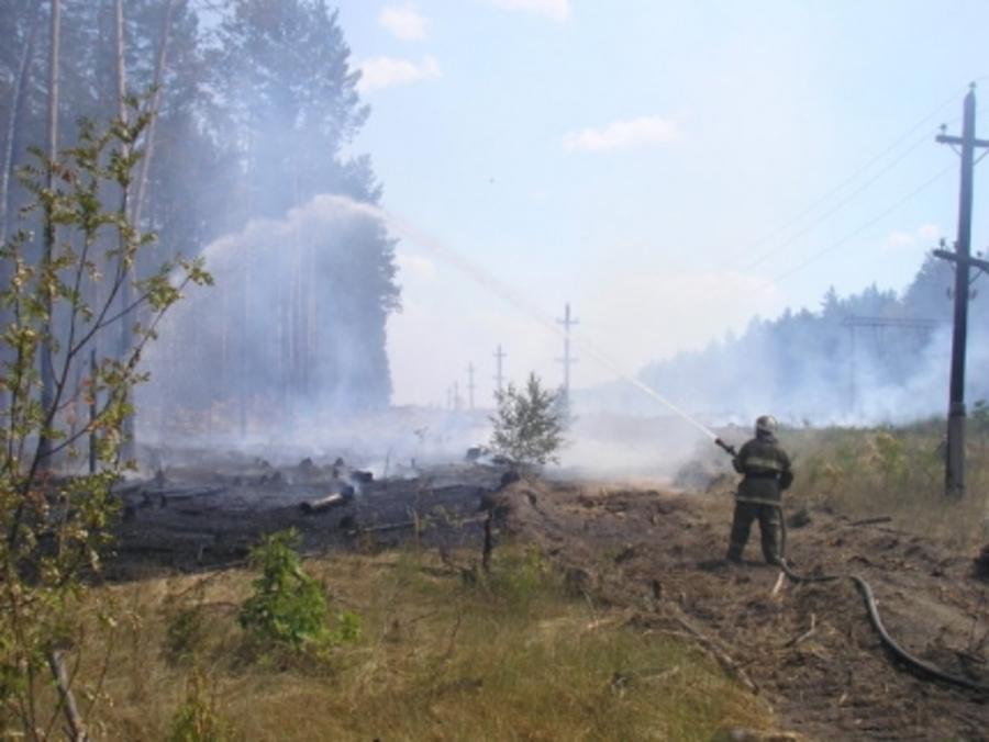 В Краснокамском районе возник лесной пожар - фото 1