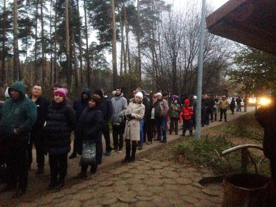 В Перми проходит бесплатная раздача дубов