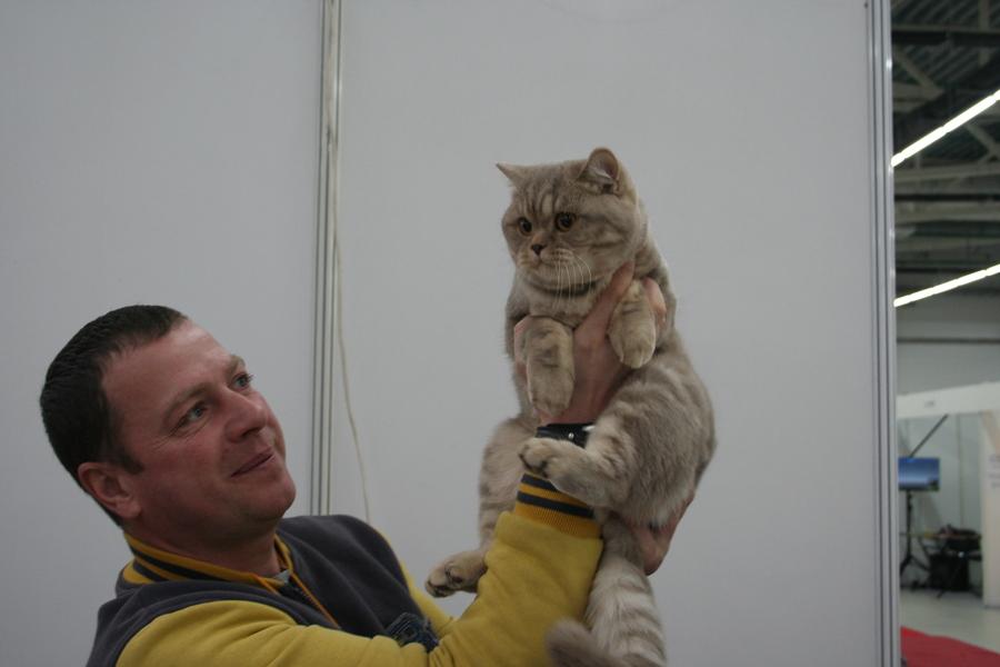 Пермским котам тоже приходится сбрасывать вес - фото 5