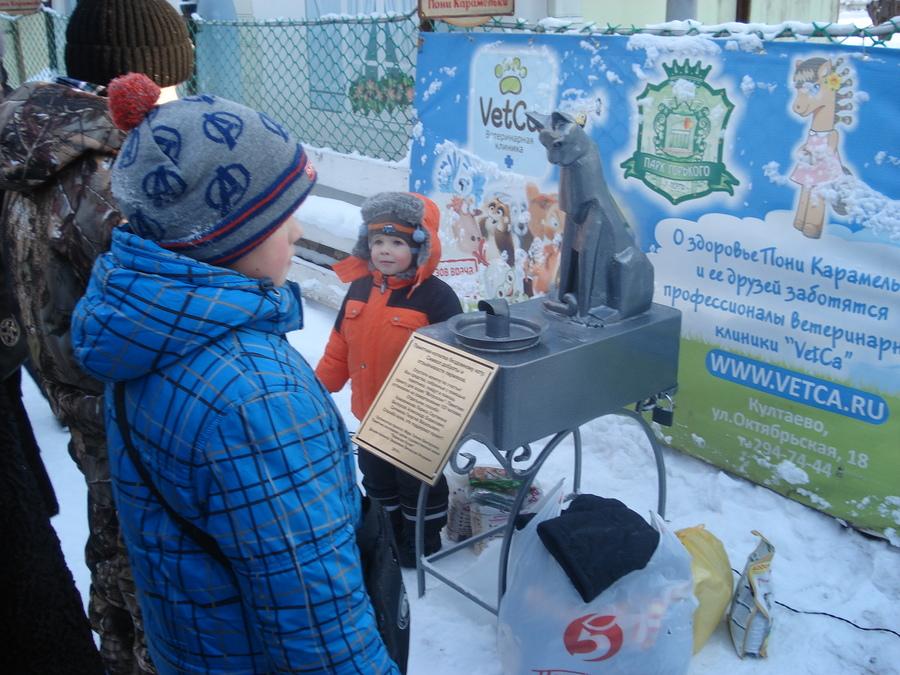На памятник бездомному коту пермяки собрали 80 тысяч рублей