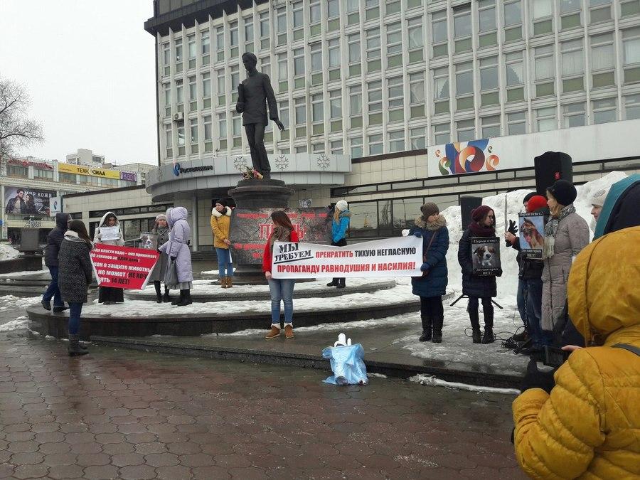 В Перми прошел митинг в защиту животных