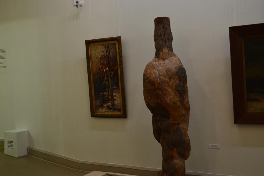 В Пермской галерее путешествуют по лесу - фото 17