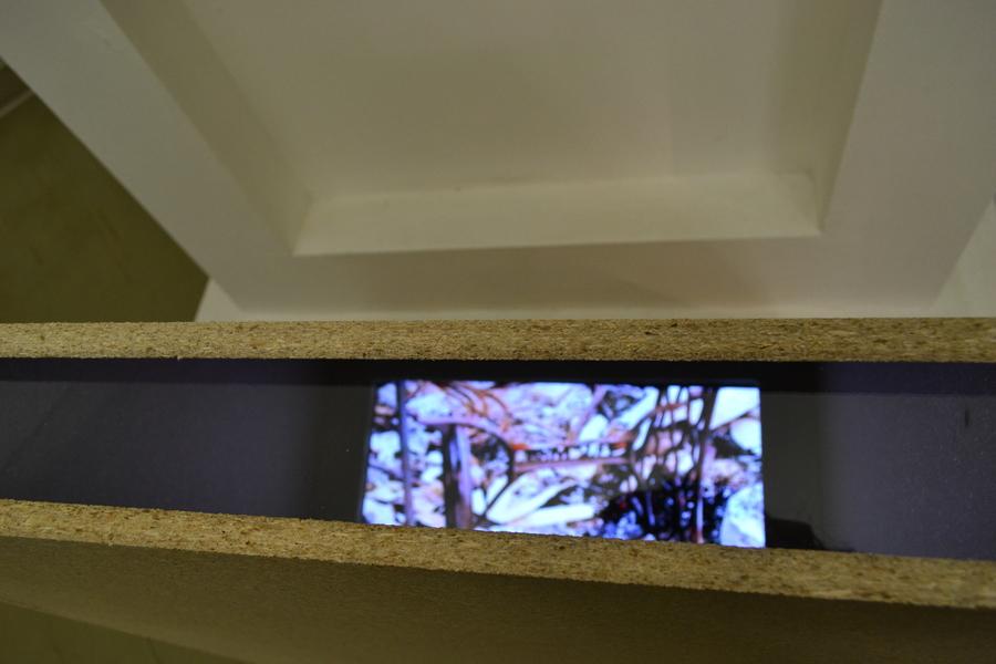 В Пермской галерее путешествуют по лесу - фото 24