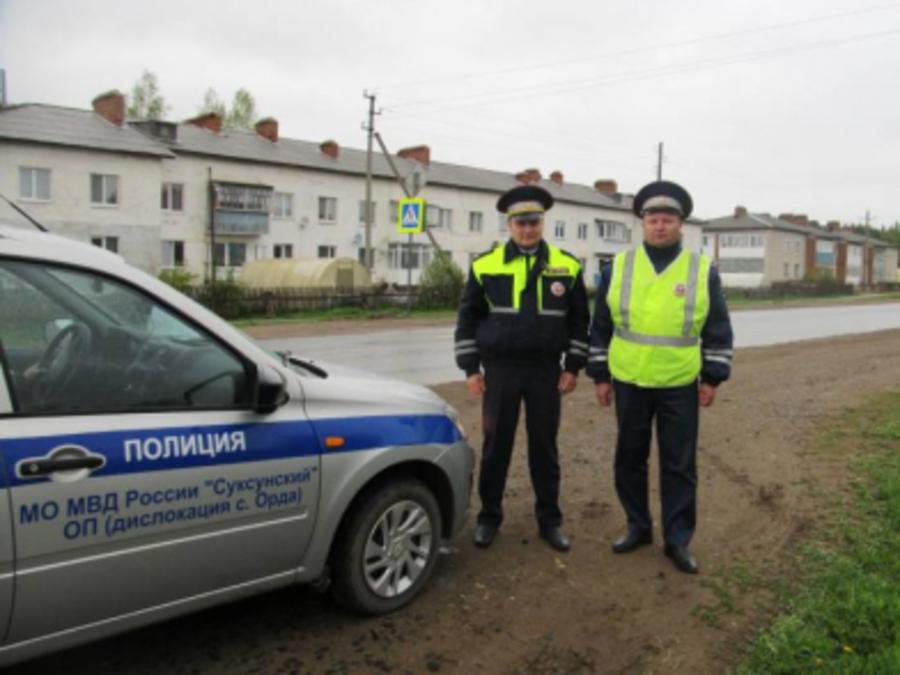 В Пермском крае полицейские спасли школьников от нападения собаки - фото 1