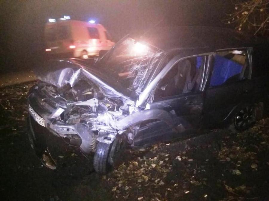 В Нытвенском районе в лобовом столкновении погиб водитель Ауди