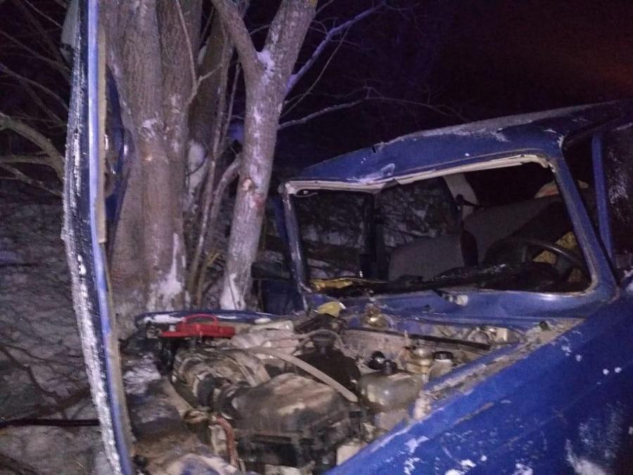 В Пермском районе автомобиль съехал в кювет и врезался в дерево, двое пострадавших - фото 1