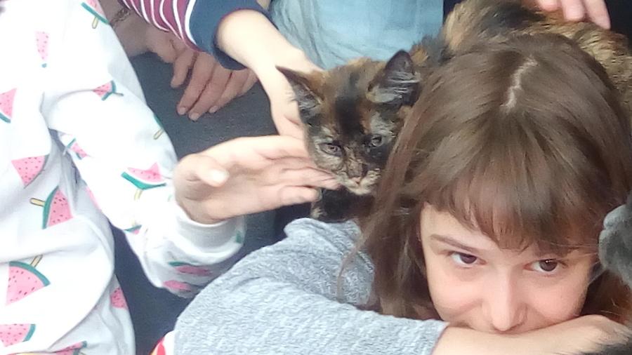 В краевой библиотеке прошла акция с тремя котами - фото 7
