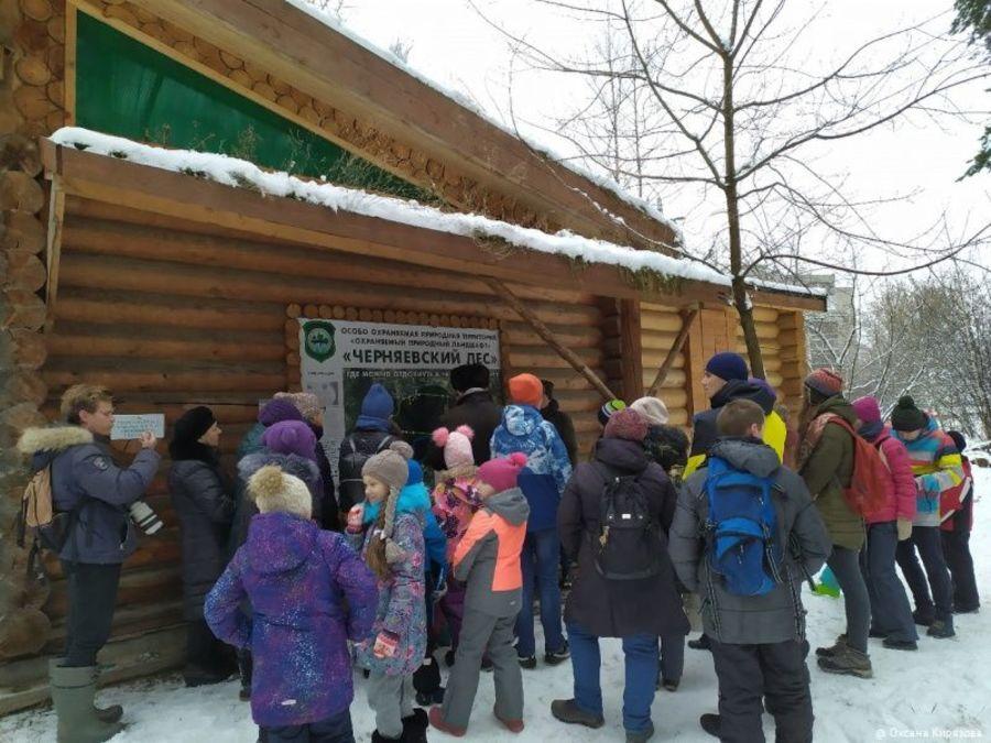 Состоялась первая «Прогулка с экологом» по Черняевскому лесу.